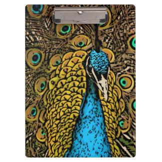 Peacock Splendor Illustration Clipboard