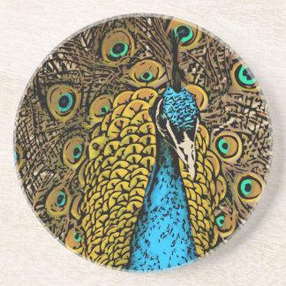 Peacock Splendor Illustration Coasters