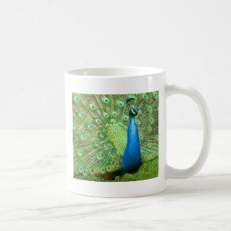 Peacock Strut Coffee Mugs