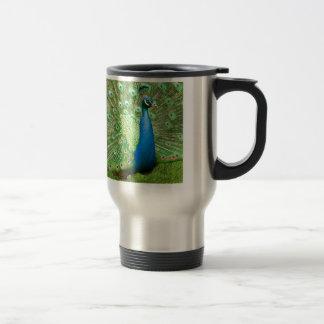 Peacock Strut Mugs