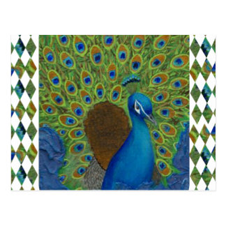 Peacock, Strut Your Feathers Postcard