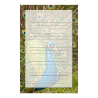 Peacock strutting stationery