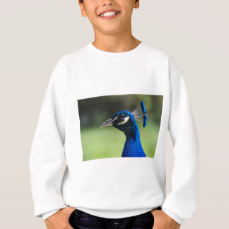 Peacock Sweatshirt