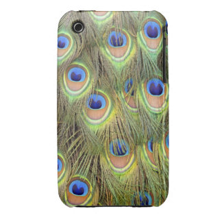 Peacock Tail Casemate iPhone 3 Cases