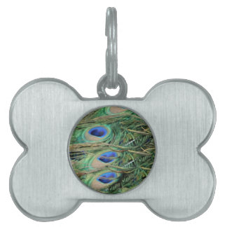 Peacock Tail Feather Blue Eyes With Growth Pet Name Tag