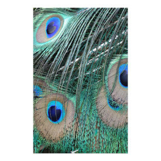 Peacock Tail Feathers Stationery