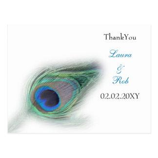 peacock ThankYou Cards