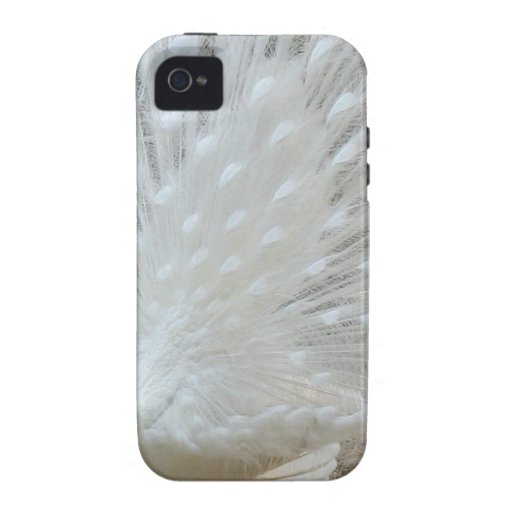 Peacock-the-animal-kingdom-13289422-1024-768.jpg Vibe iPhone 4 Cases