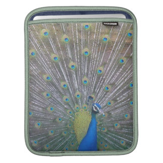 Peacock the One Sleeves For iPads