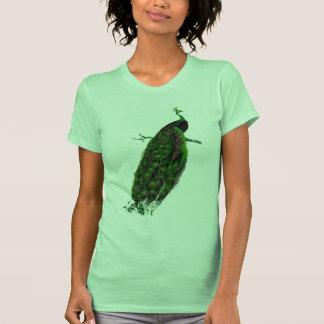 Peacock Tshirt