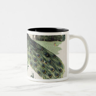 Peacock Two-Tone Coffee Mug