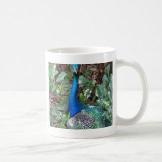 Peacock Under A magnolia Tree Coffee Mug