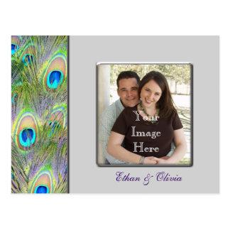 Peacock Wedding Save The Date Postcard