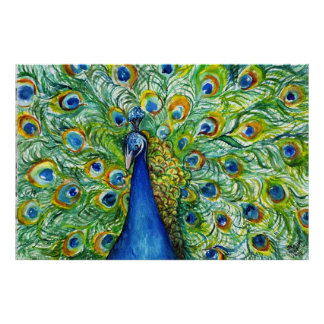 Peacock with Full Tail Feathers Poster