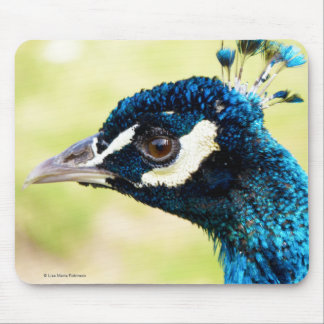 Peacock with new Crest | Peafowl Mousepad