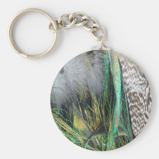 Peacock With New Feather Growth Key Ring