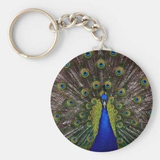 peacockfanfare key ring