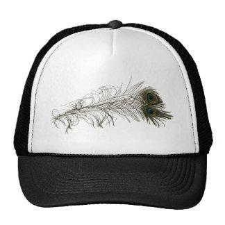 PeacockFeathers030310 Hats