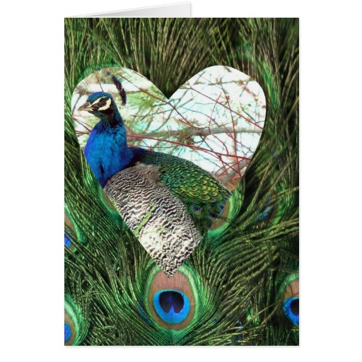 Peacocks in a Heart Card