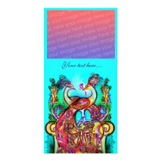 PEACOCKS IN LOVE ,red blue turquase green Picture Card