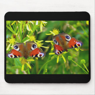 Peafowl butterfly mouse pad