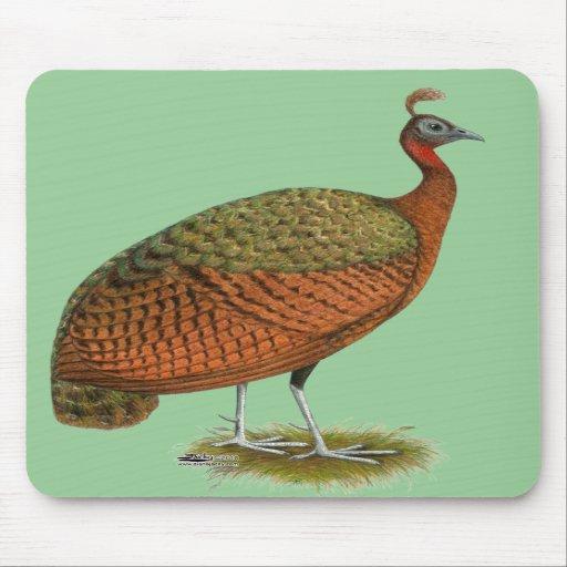 Peafowl:  Congo Peahen Mousepad