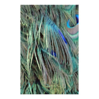 Peafowl Eye Feathers Blue And Green Stationery