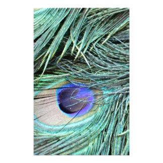 Peafowl Feather Eye Stationery