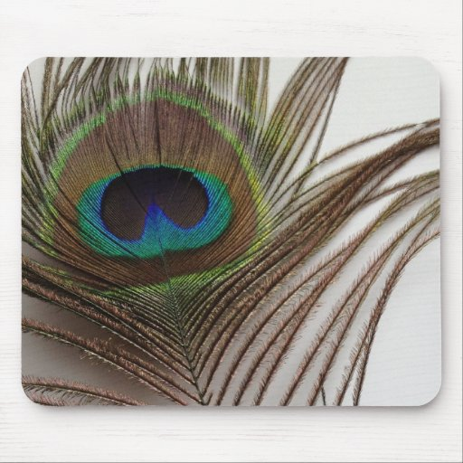 Peafowl feather mouse pad