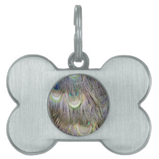 Peafowl Feathers Big  Eyes Dashing Colors Pet ID Tag