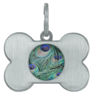 Peafowl Feathers Green And Blue Eyes Pet Tag