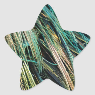 Peafowl Feathers No Eyes Colorful Star Sticker