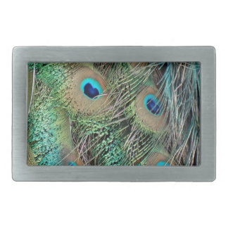 Peafowl Feathers True Colors New Growth Rectangular Belt Buckle