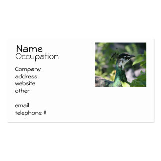 Peahen Profile Business Cards