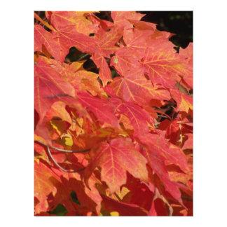 Peak leaves 21.5 cm x 28 cm flyer
