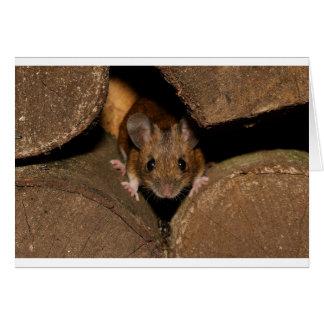 Peanut the Wood mouse Card