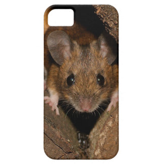Peanut the Wood mouse iPhone 5 Cases