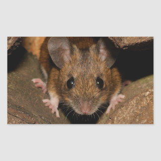 Peanut the Wood mouse Rectangular Stickers