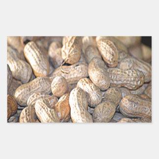 Peanuts Rectangular Sticker