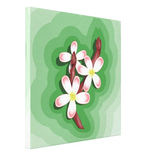 Pear Blossom Stretched Canvas Prints
