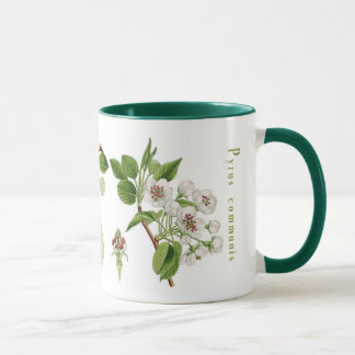 Pear Mug (You can customize)
