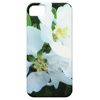 Pear tree flower case for the iPhone 5