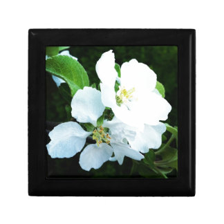Pear tree flower gift box