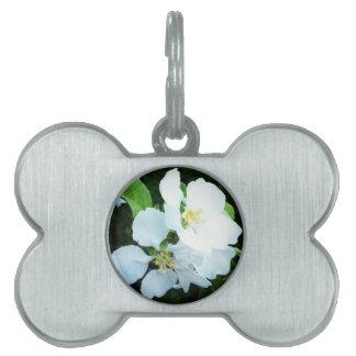 Pear tree flower pet ID tag
