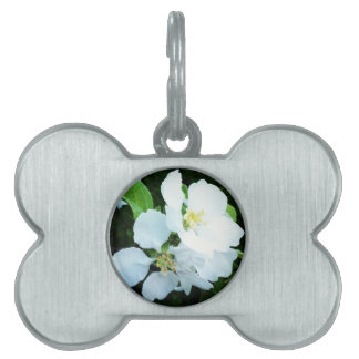 Pear tree flower pet name tag
