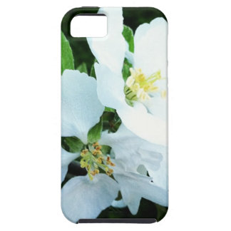 Pear tree flower tough iPhone 5 case