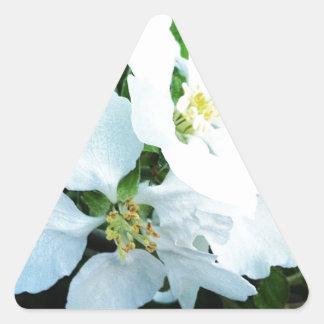 Pear tree flower triangle sticker