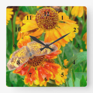Pearl Crescent Butterfly on Sneezeweed Wall Clocks