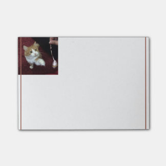 Pearl Paw Out for Play Post-it® Notes