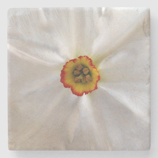 pearl white narcissus stone coaster